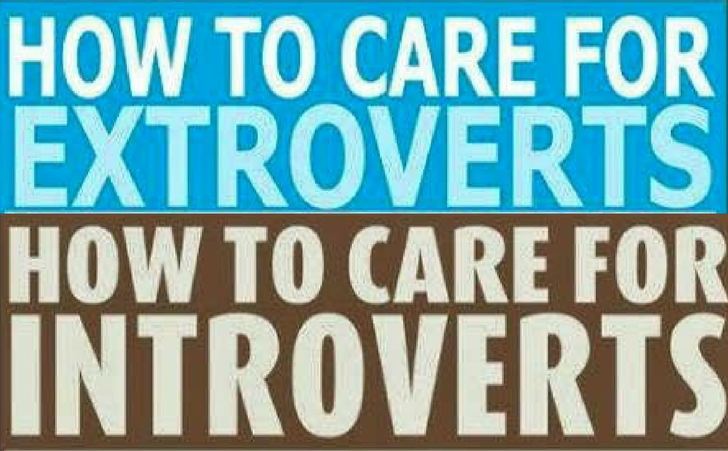 How to Care for Extroverts / How to Care for Introverts ...