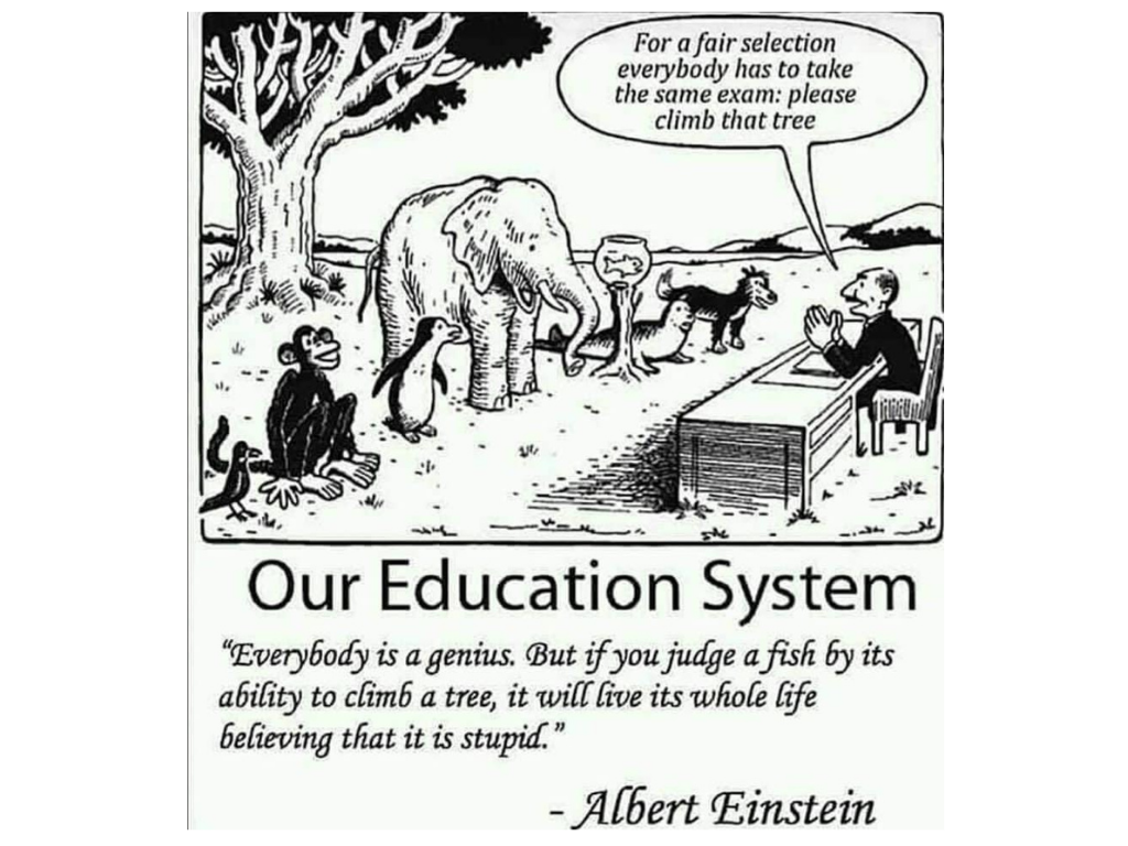 hack the education system